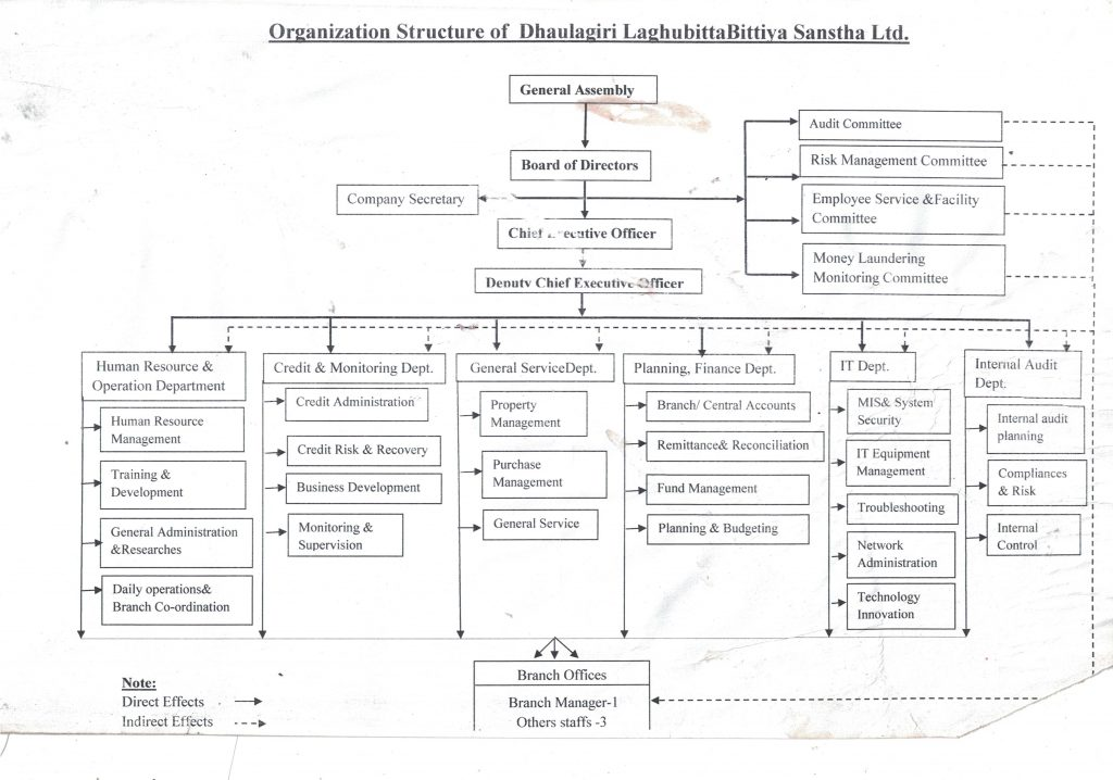 Chart of organization
